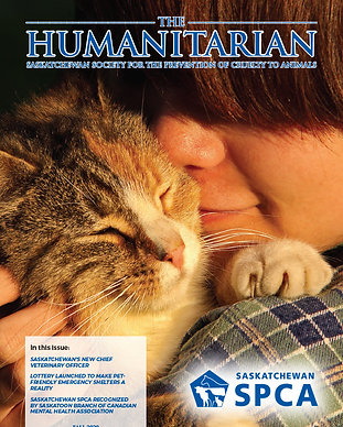 the-humanitarian-fall-2020-cover.png