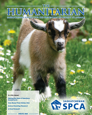 the-humanitarian-spring-2020-cover.png