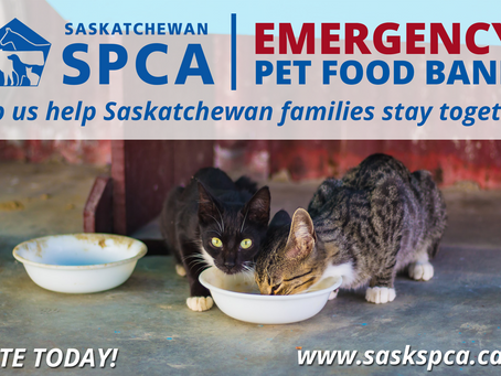 Saskatchewan SPCA Launches Provincial Emergency Pet Food Bank