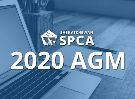 Notice of 2020 Annual General Meeting
