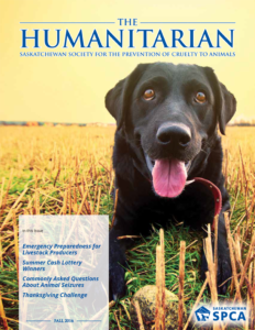 The Humanitarian – Fall 2016