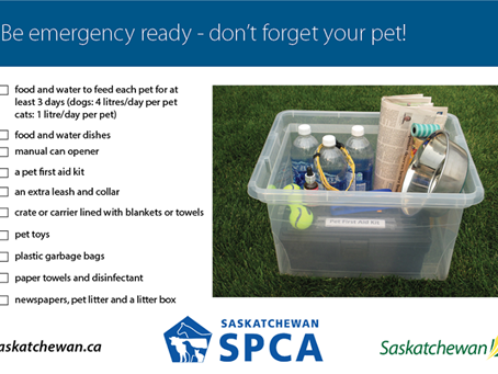 Be Emergency Ready – Plan, Prepare And Be Aware