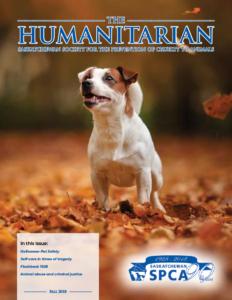The Humanitarian: Fall 2018