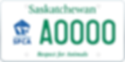 2913 - Auto Fund SPCA_plate_A0000.png