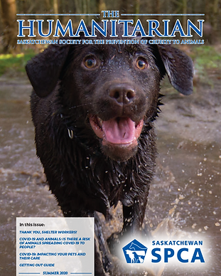 the-humanitarian-summer-2020-cover.png