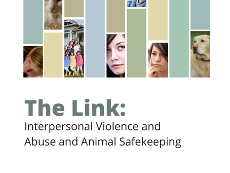 Report explores the link between violence to animals and humans