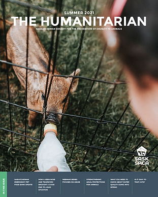 the-humanitarian-summer-2021-cover.png