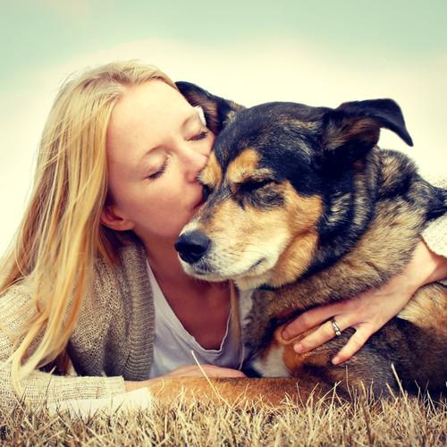 Home | Saskatchewan SPCA