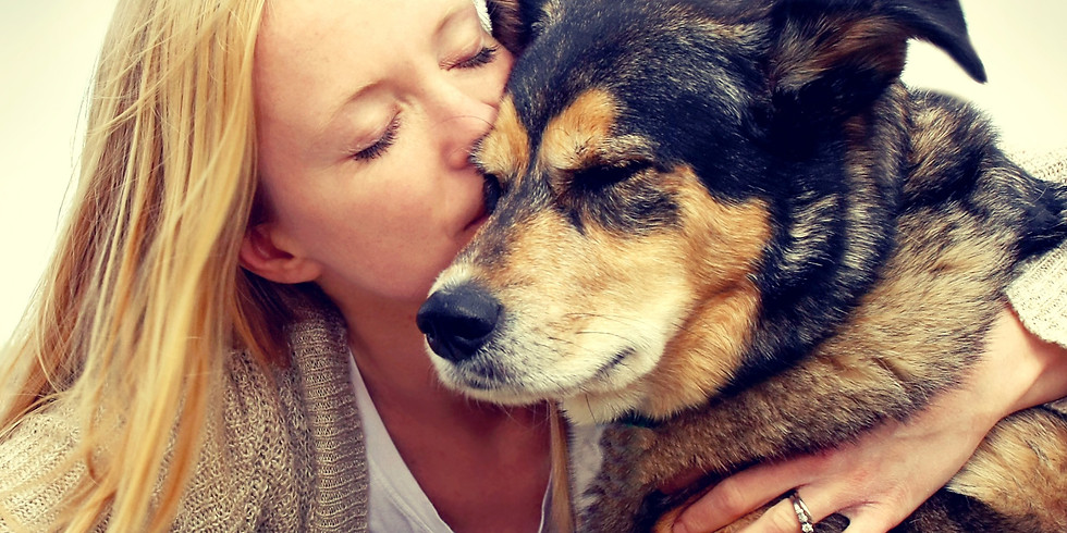 Making Connections: The Human-Animal Bond