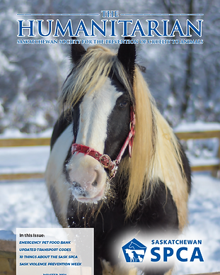 the-humanitarian-winter-2021-cover.png