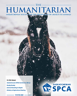 the-humanitarian-winter-2020-cover.png