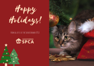 Saskatchewan SPCA Holiday Hours