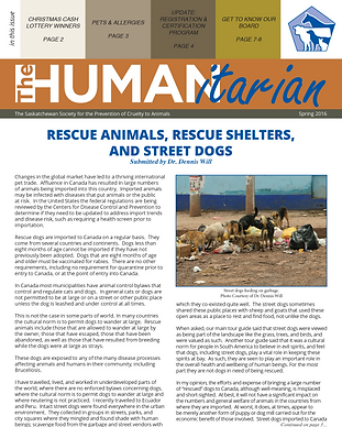 the-humanitarian-spring-2016-cover.png