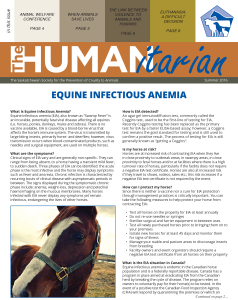 The Humanitarian: Summer 2016