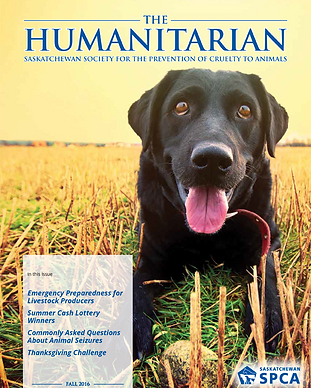 The-Humanitarian-Fall-2016-cover.png