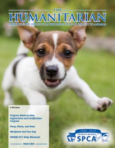 The Humanitarian: Spring 2018