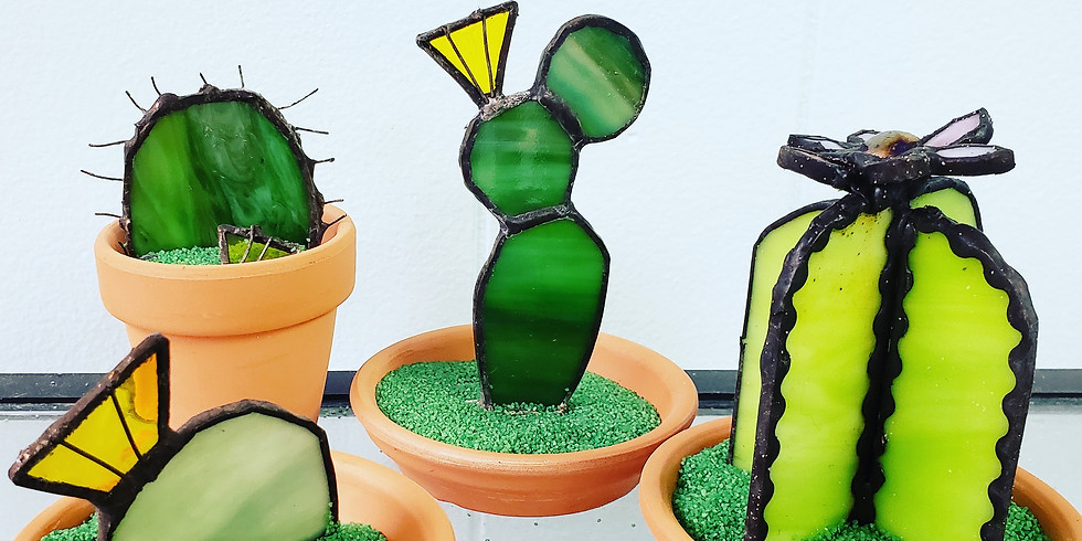 Blooming Cactus Garden with Ginger