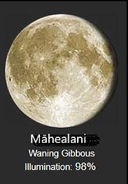 mahealani.png