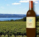 finger-lakes-wineries.jpg