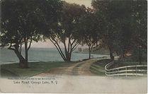 Cayuga Lake Road Drive