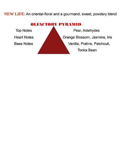 New Life Olfactory pyramid.jpg