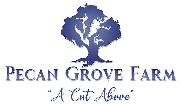 Pecan Grove Logo 2.png