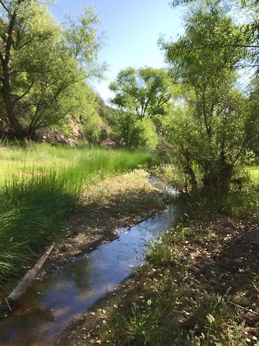 Babocamari River 2.jpg