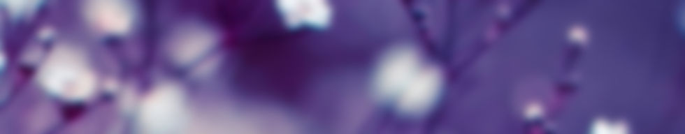 187-1872993_lavender-flower-wallpaper-pu