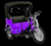 Central Park Tour I Central Park Pedicab Tour I NYC sightseeing tour I Pedal Me Pedicabs | New York City