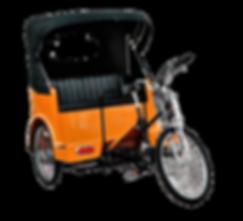 Central Park Tour I Central Park Pedicab Tour I NYC sightseeing tour I Pedal Me Pedicabs   New York City