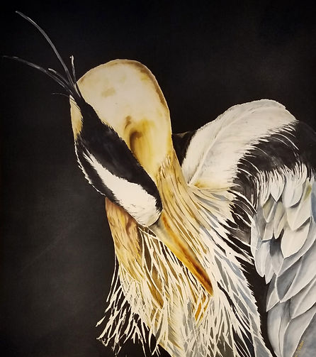GWinters - Tranquil Heron 38x41 Dye on S
