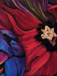Diego's Flowers
