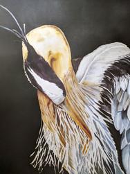 Tranquil Heron