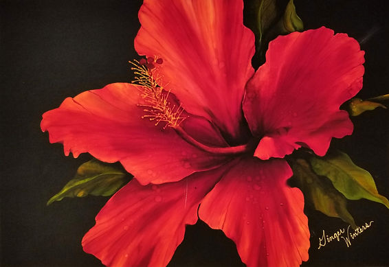 GWinters - Red Hibiscus 26x20 Dye on Sil