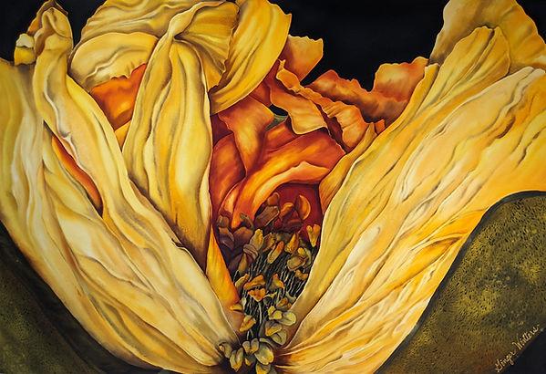 GWinters - Icelandic Poppy 48x30 Dye on