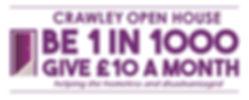 Open House 1 in 1000.jpg