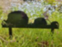 hedgehog .jpg