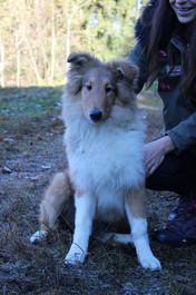 Photos Carla 041 petit.jpg