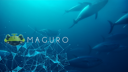 maguro1.png