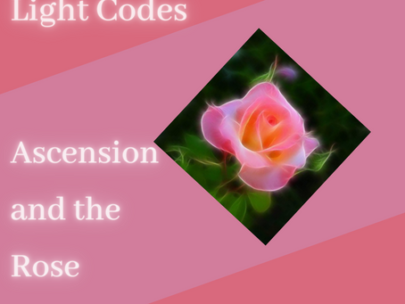 Light Codes of Ascension and the Rose