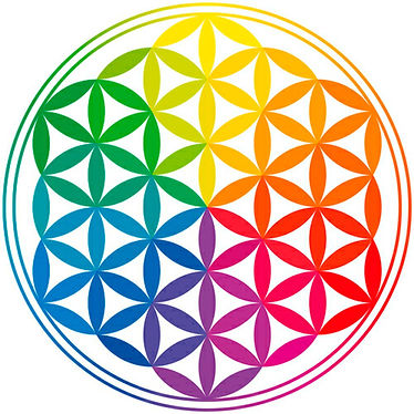 colour flower of life.jpg