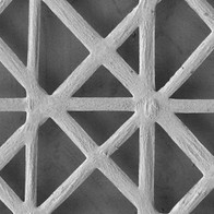MSC-Specific Scaffold for Enhanced Tissue Regeneration