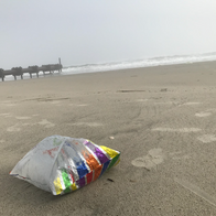 Evaluating Micro- and Macro-Plastic Concentrations on New Jersey Coastal Beaches