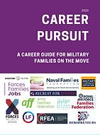 Career pursuit.PNG