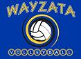 Wayzata.png
