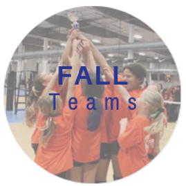 Fall Teams image.png