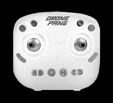 dronepang_controller.png