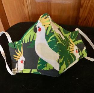 2- 24 - Sulphur Crested cockatoo, medium-petite, lrg. $20.00