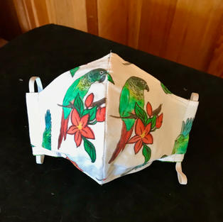 2-16 Green Cheek Conures - small,med-petite, lrg, $20.00