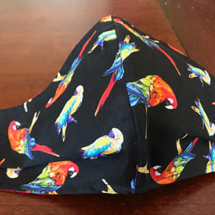 #2-3 Macaw Parrots - sml,med-petite,large $15.00